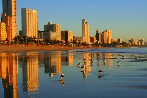 the-durban-golden-mile-highlights-tour